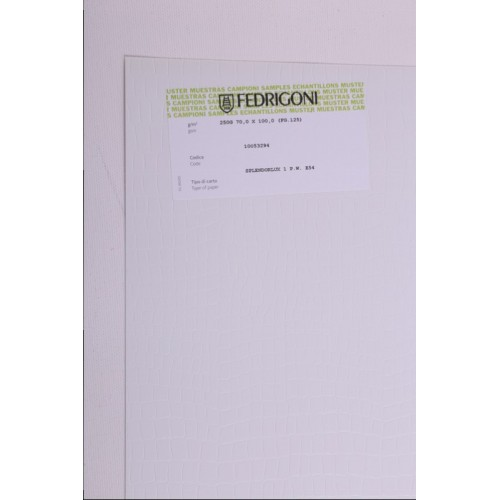 SPLENDORLUX /E E54 ARMADILLO P.W. 70x100 gr.250 fg.125