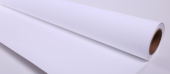 Roll-Up in PP White/White