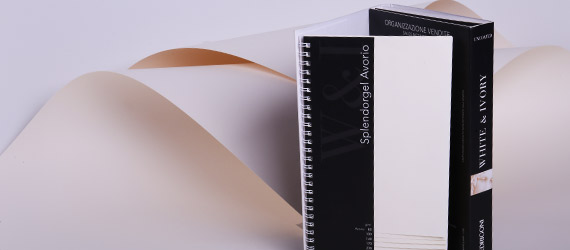Splendorgel Avorio - Extra White