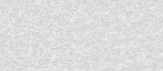 pergamenata-bianco - carta pergamenata bianca - pergamene - mondocarta - fedrigoni - carte trattate - supporti in carta